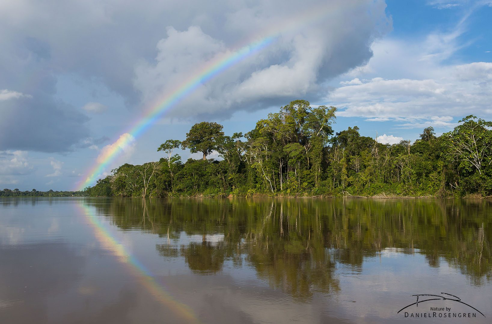 Rainbow over the rainforest. © Daniel Rosengren