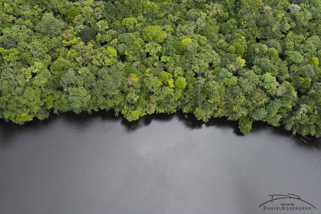 The Potaro River, just above Kaieteur Falls. © Daniel Rosengren